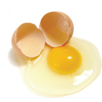 Frozen eggs (melange)
